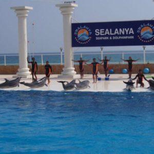 alanya-dolphin-park1