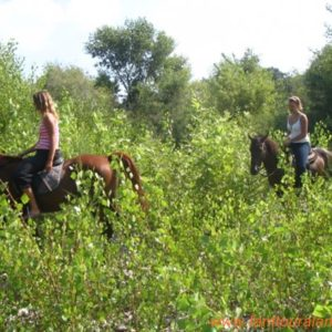alanya-horse-riding-tour012