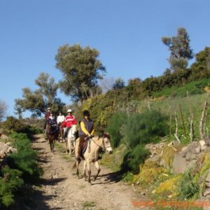 alanya-horse-riding-tour014