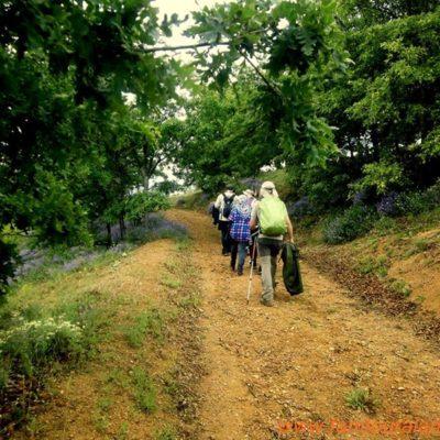 alanya-hiking-tours024