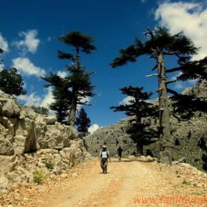alanya-hiking-tours034