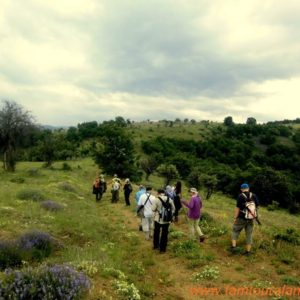 alanya-hiking-tours037