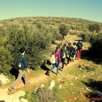 CARIAN TRAIL Hiking-tour002