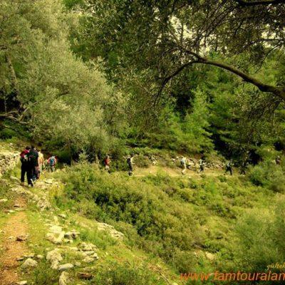 alanya-toslak-uçanca-waterfall011