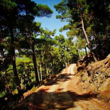 dim dam hiking